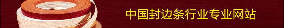 中国封边条网