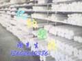 UPE PE塑料板/棒