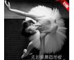 天津市舞蹈室地胶_PVC舞蹈地胶地板