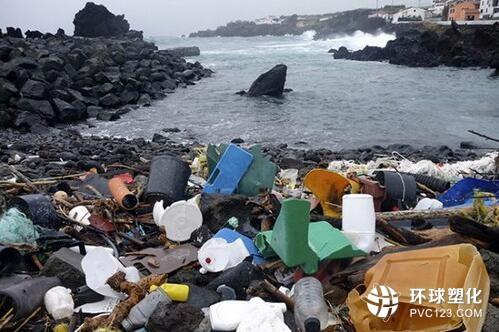 你关注过那些正被危害塑料垃圾的海洋吗