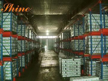 天津驶入式货架 结构 特点 图片 尺寸 驶入式货架厂